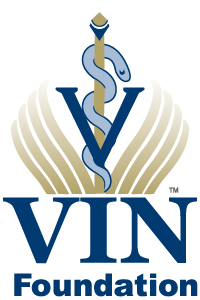 VIN Foundation